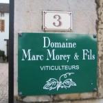 Marc Morey